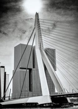 Architectuur - Rotterdam Wilhelminapier