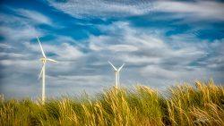 LG-Windmolens Rotterdam - fotograaf duurzaamheid-1