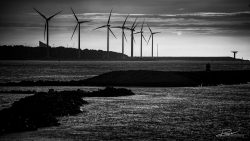 LG-Windmolens Rotterdam - fotograaf duurzaamheid-3