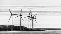 LG-Windmolens Rotterdam - fotograaf duurzaamheid-4