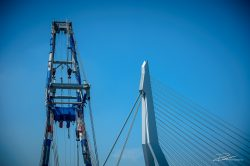 Port of Rotterdam - Erasmusbrug en bok