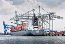 Port of Rotterdam Kraan-4