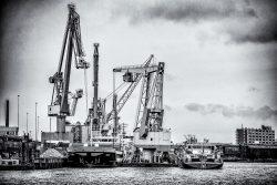 Port of Rotterdam in Zwartwit
