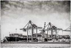Port of Rotterdam in Zwartwit-4