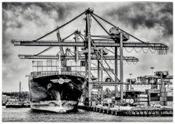 Port of Rotterdam in Zwartwit-5
