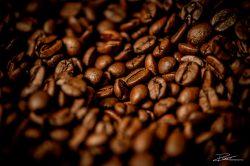 vanduijnenkoffie-18